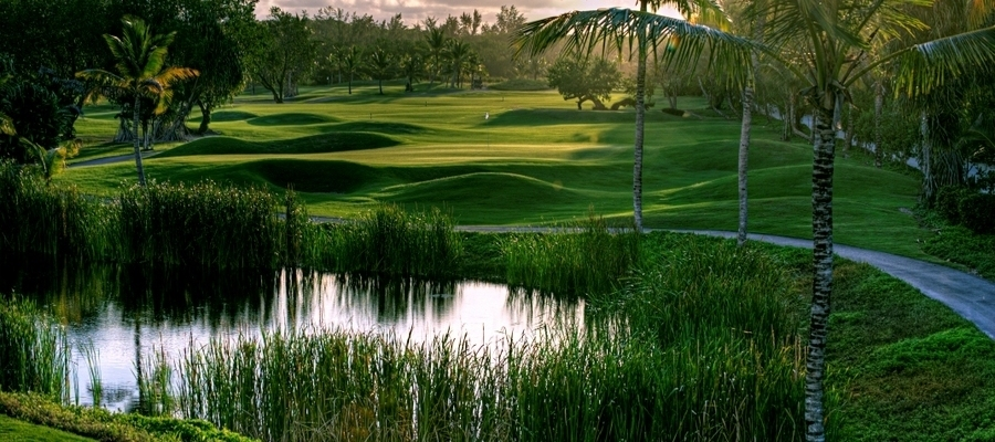 Barcelo_Bavaro_Beach_Golf_Acentro
