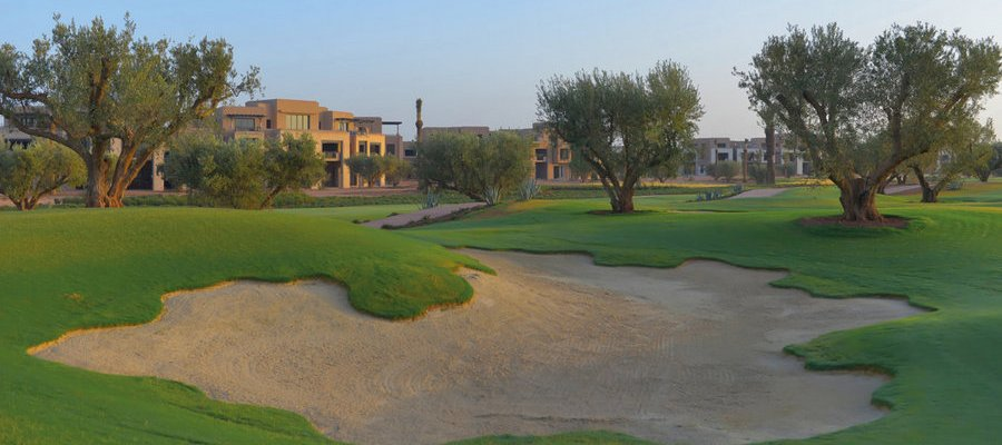 Royal_Palm_Golf_1_Acentro