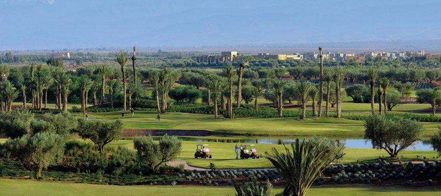Royal_Palm_Golf_4_Acentro