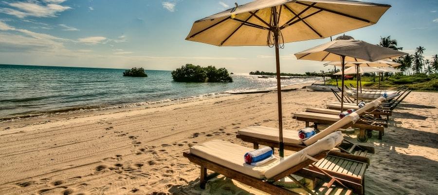 Zanzibar Acentro