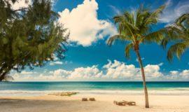 Sandals Barbados Acentro